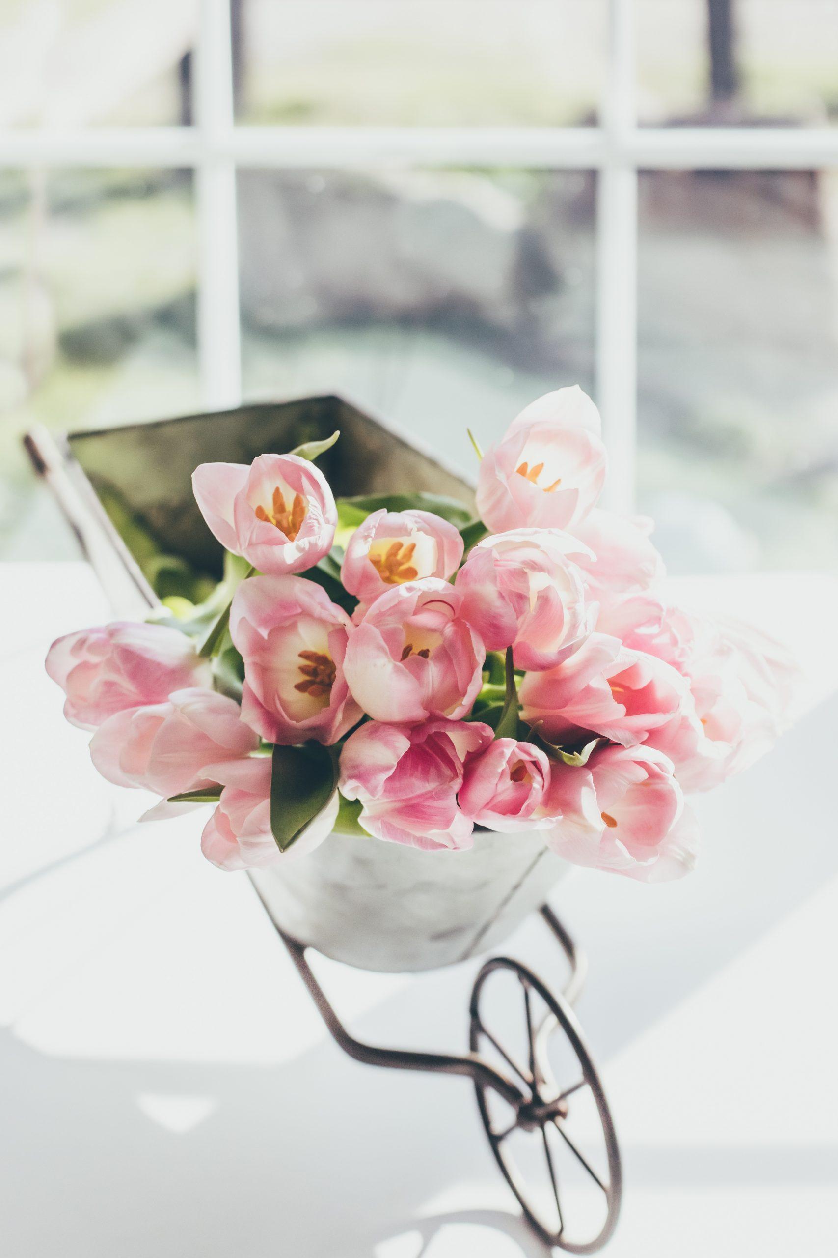 Nów w Baranie czyli kolejny przełom i krok w stronę prawdziwej wiosny!